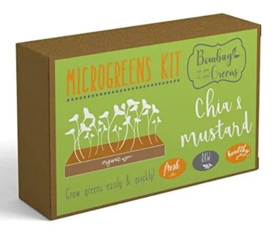 DIY Microgreens Kit