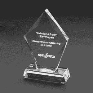 Engraving recognition employee awards